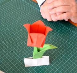 Online origami oktatás - tulipán hajtogatás